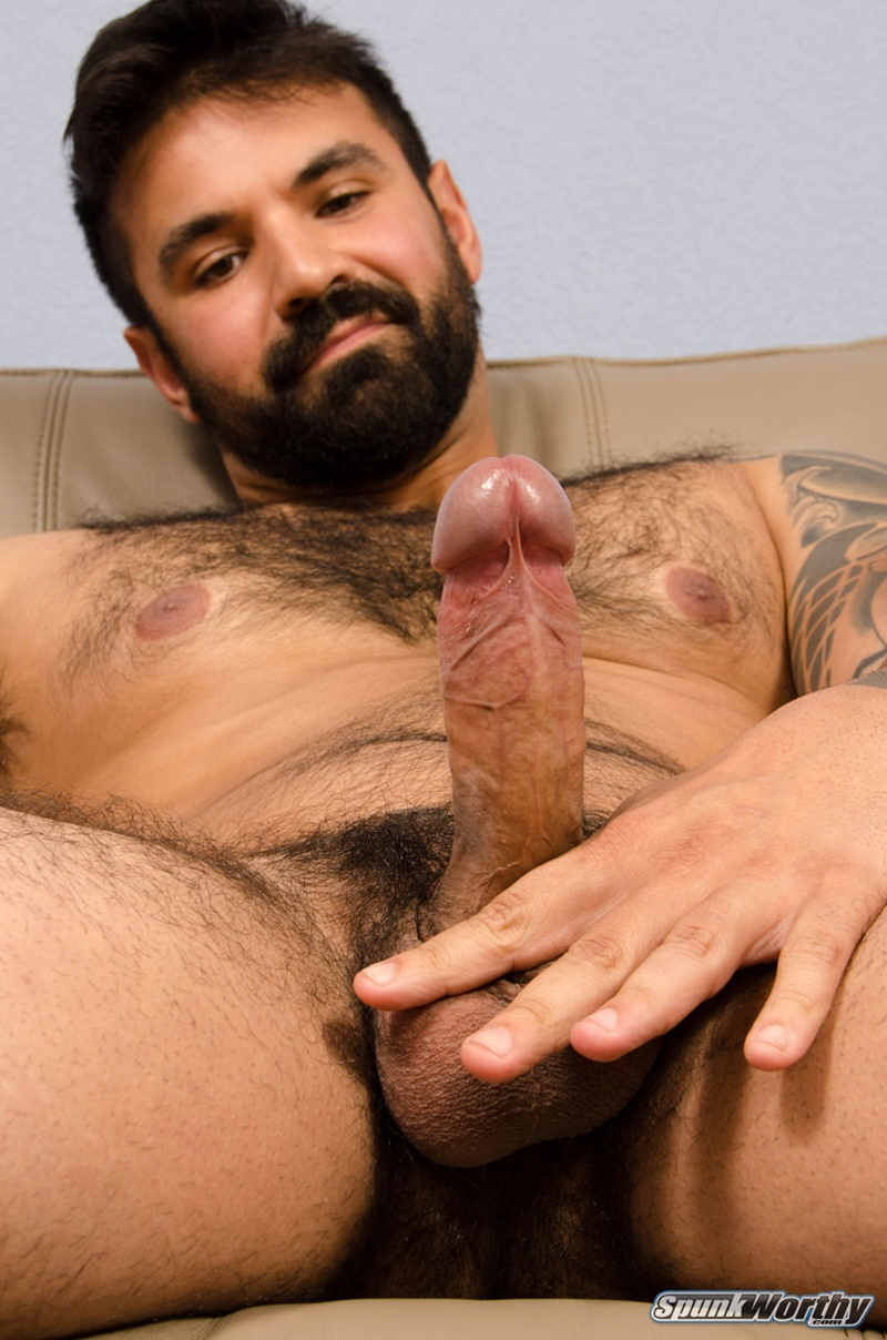 Free gallery gay hairy